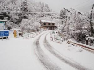 2月に入るとこの雪景色 椎葉はすごいことになっています。