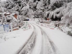 ここは宮崎県なのですが・・・・雪景色